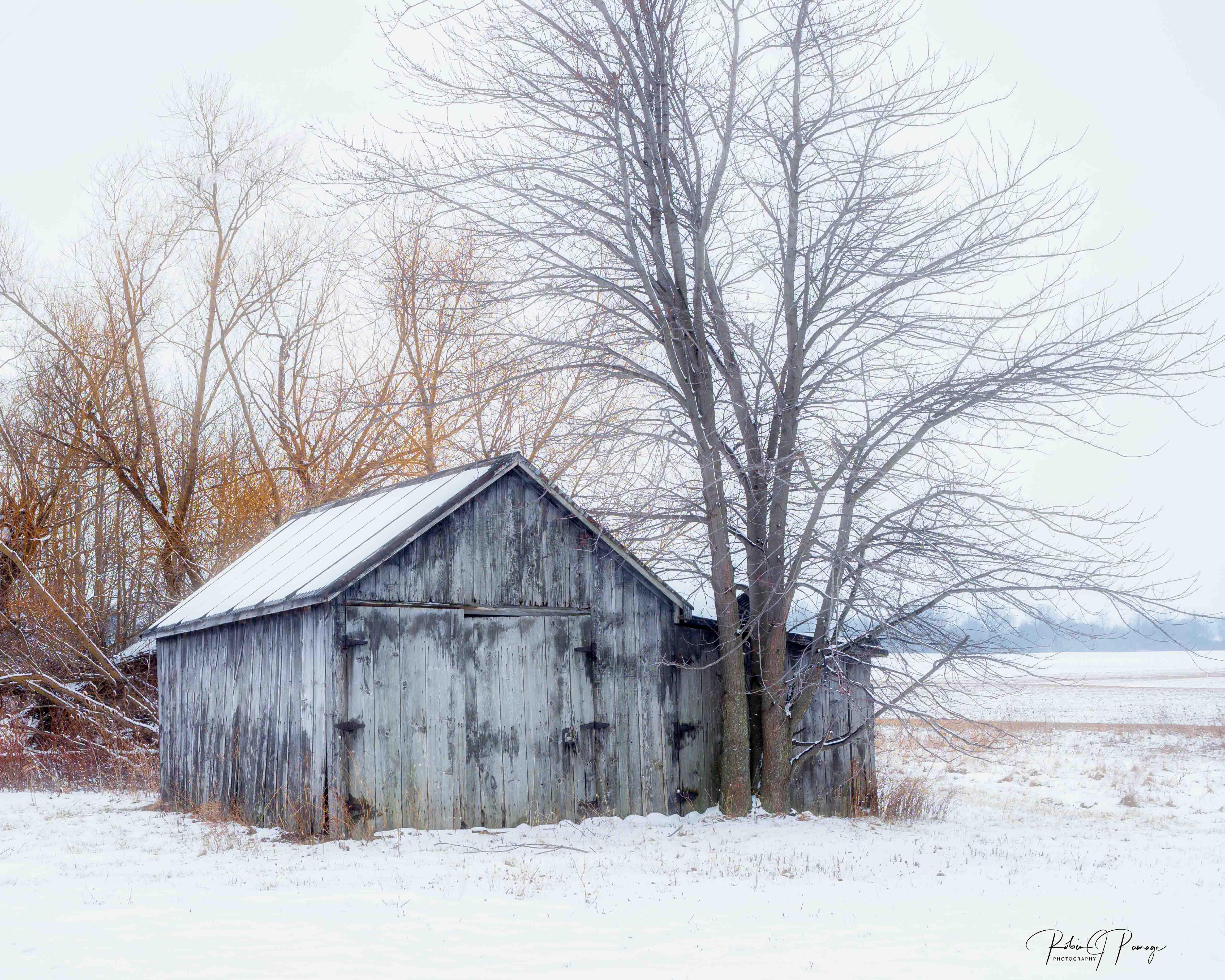 My Old Barn Robin Ramaga RJR005 $90.00